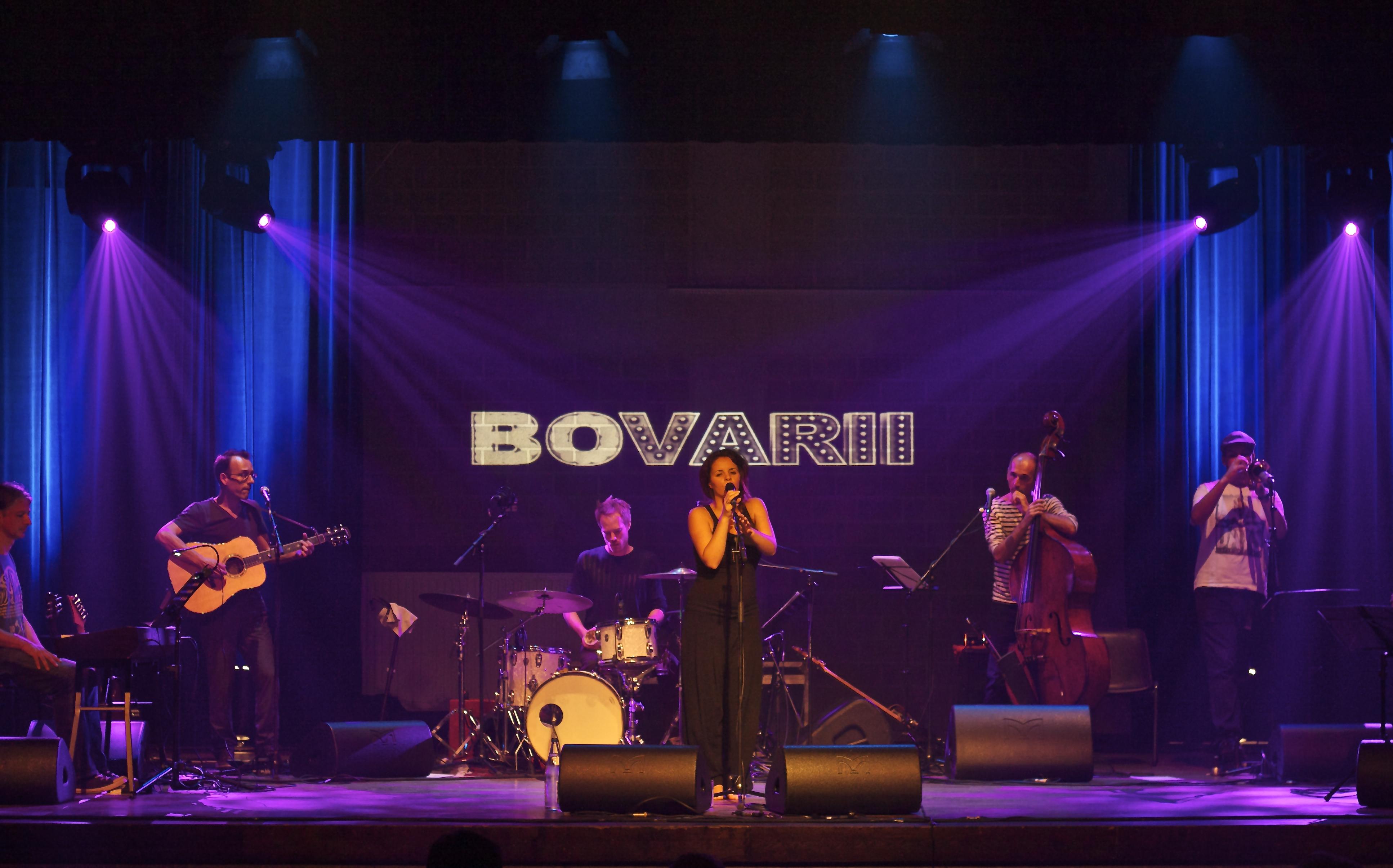 Bovarii